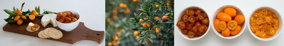 kumquat products